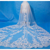 3 Meter Cathedral Lace Veil - SALE LAB