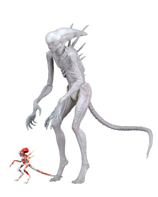 "NECA 7"" Scale Action Figure - Alien Covenant Neomorph"