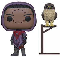 Funko Games Pop! - Destiny s2 - Hawthorne w/ Hawk