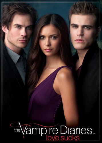 Magnet: The Vampire Diaries Stefan Damon Elena