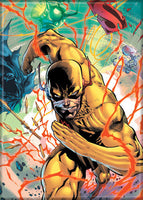 Magnet: The Flash - Zoom