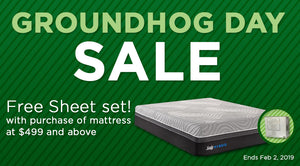 Groundhog's Day Sale!