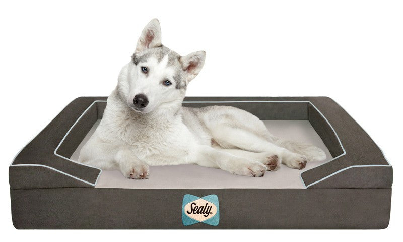Max Sealy Dog Bed