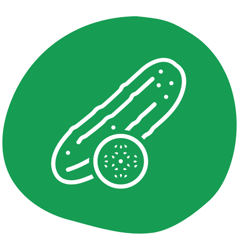 cucumber healthy vegetable for dogs