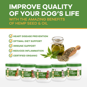Probiotics for Dogs with Organic Hemp - Digestive Health and Immunity Support