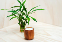 Load image into Gallery viewer, No. 136 bamboo + basil