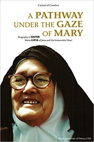 A Pathway Under the Gaze of Mary: Biography of Sister Maria Lucia of Jesus and the Immaculate Heart