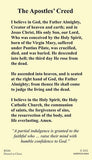 The Apostles' Creed Laminate Holy Card