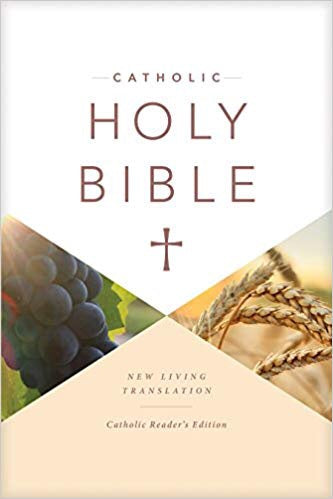 Catholic Holy Bible Reader's Edition (Hardcover)