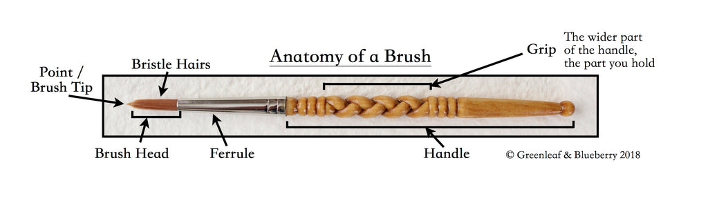 Anatomy of a Brush Watercolor Paintbrush Greenleaf and Blueberry Hand Carved Paintbrush Handle Jess Greenleaf Carving