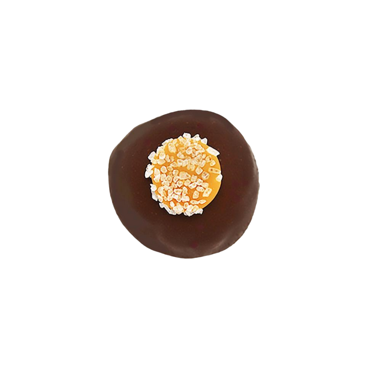 Sea Salt Classic Caramel Chocolate Truffle