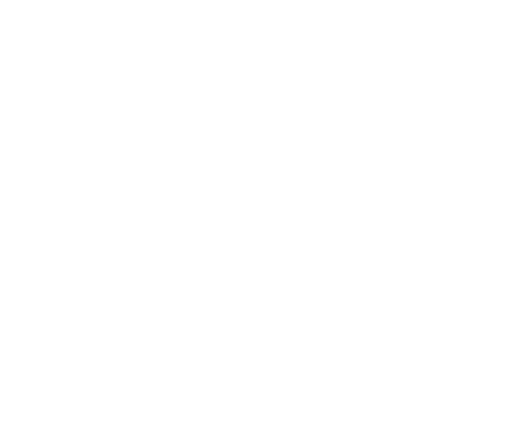 Art of Vinnie Pavao