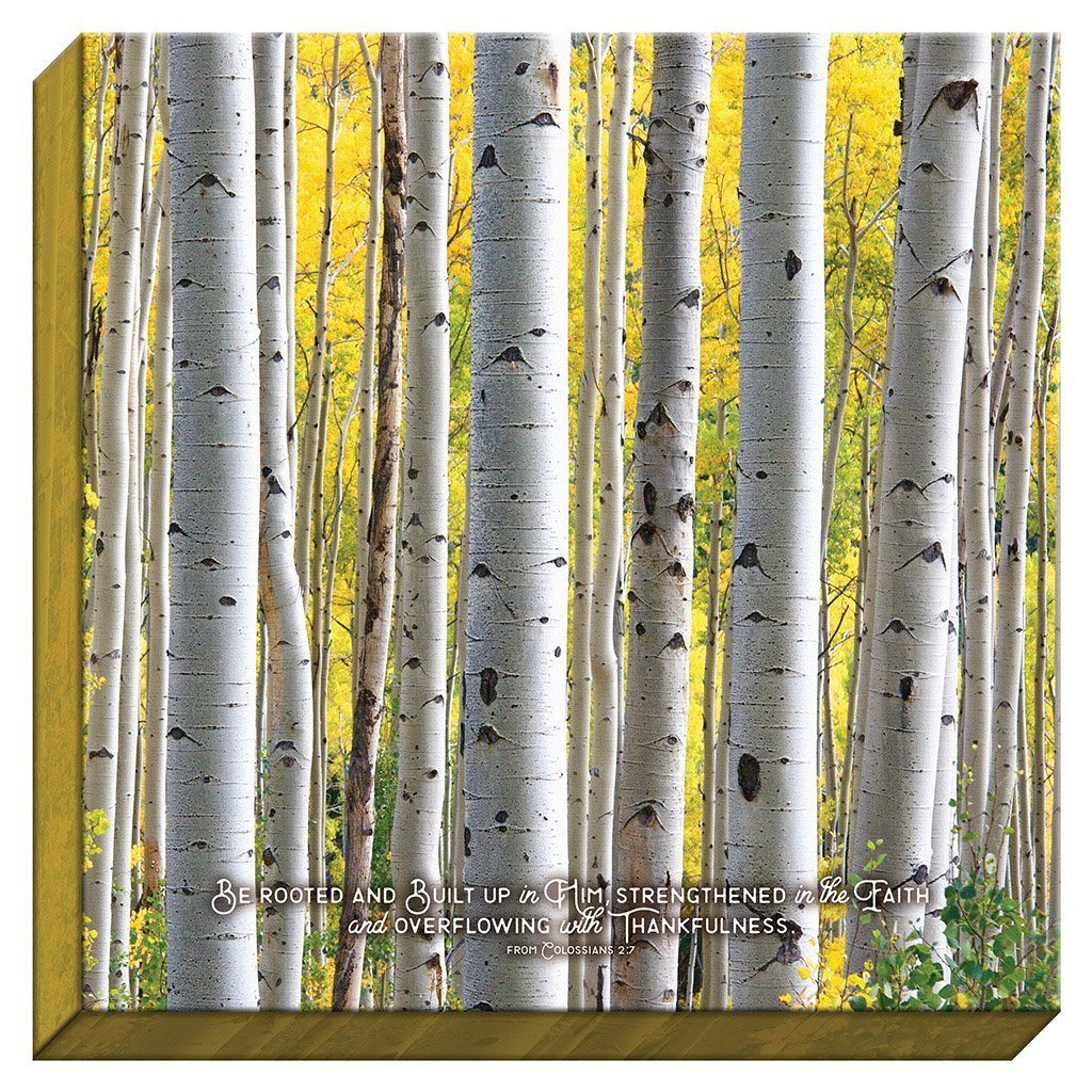 Be Rooted Birch Canvas