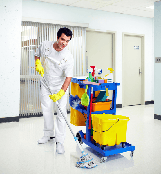 Janitor Safety Wedge Small.png