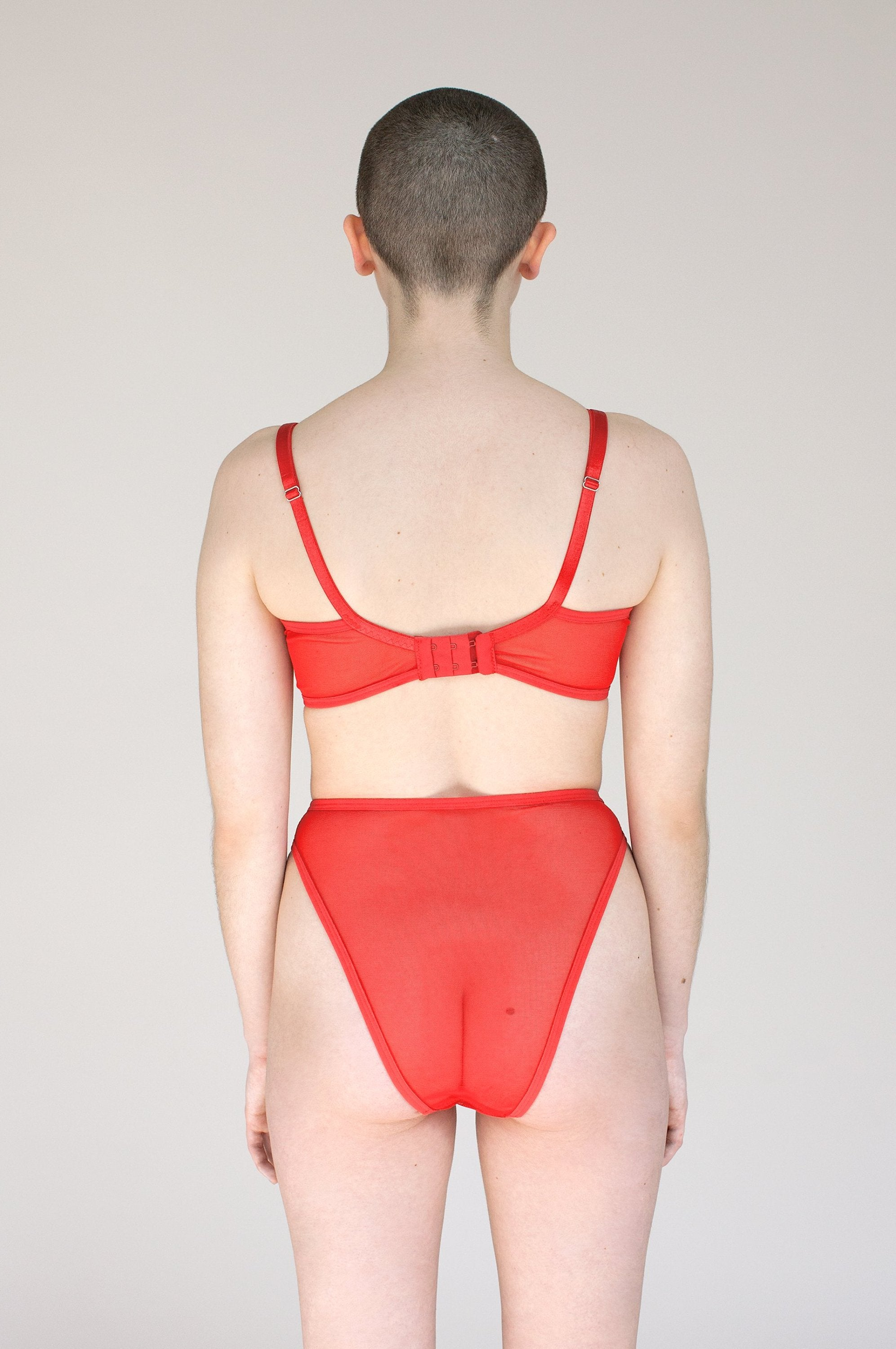 Lee Panties - High-Waisted French Cut Mesh Underwear in Red