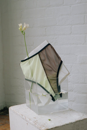 WALKER PANTIES - BROWN AND PALE GREEN