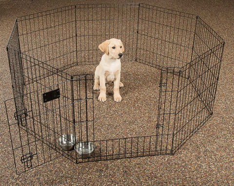 "24"" Exercise Pen with Stakes"