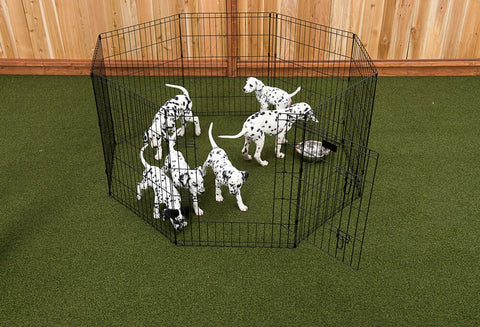 "36"" Exercise Pen w/Stakes"