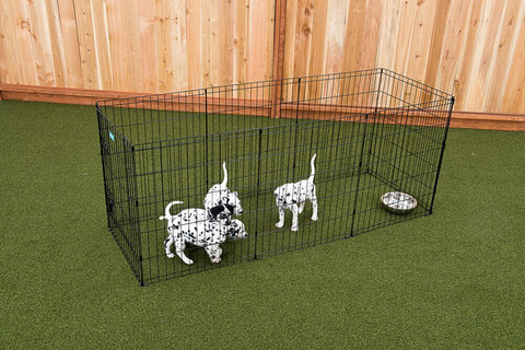 "48"" Exercise Pen w/Stakes"