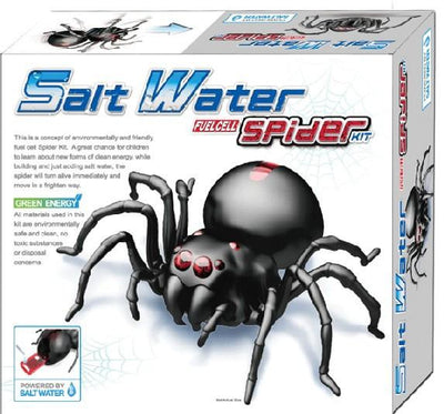 Kidz Lab 4M Kids Kids Lab Salt Water Spider Science Kit