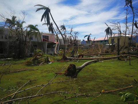 Donate to Hurricane Irma Relief Efforts - Trendi Fashions Boutique
