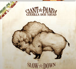 Slow Down Double Vinyl