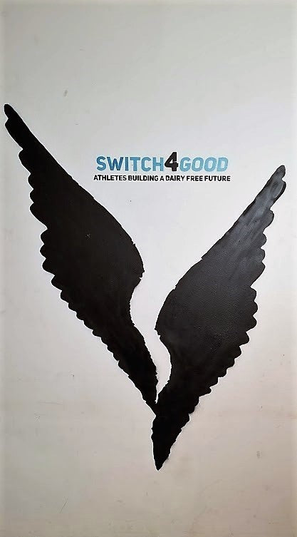 Switch4Good Brand Logo Design Wings of Niki