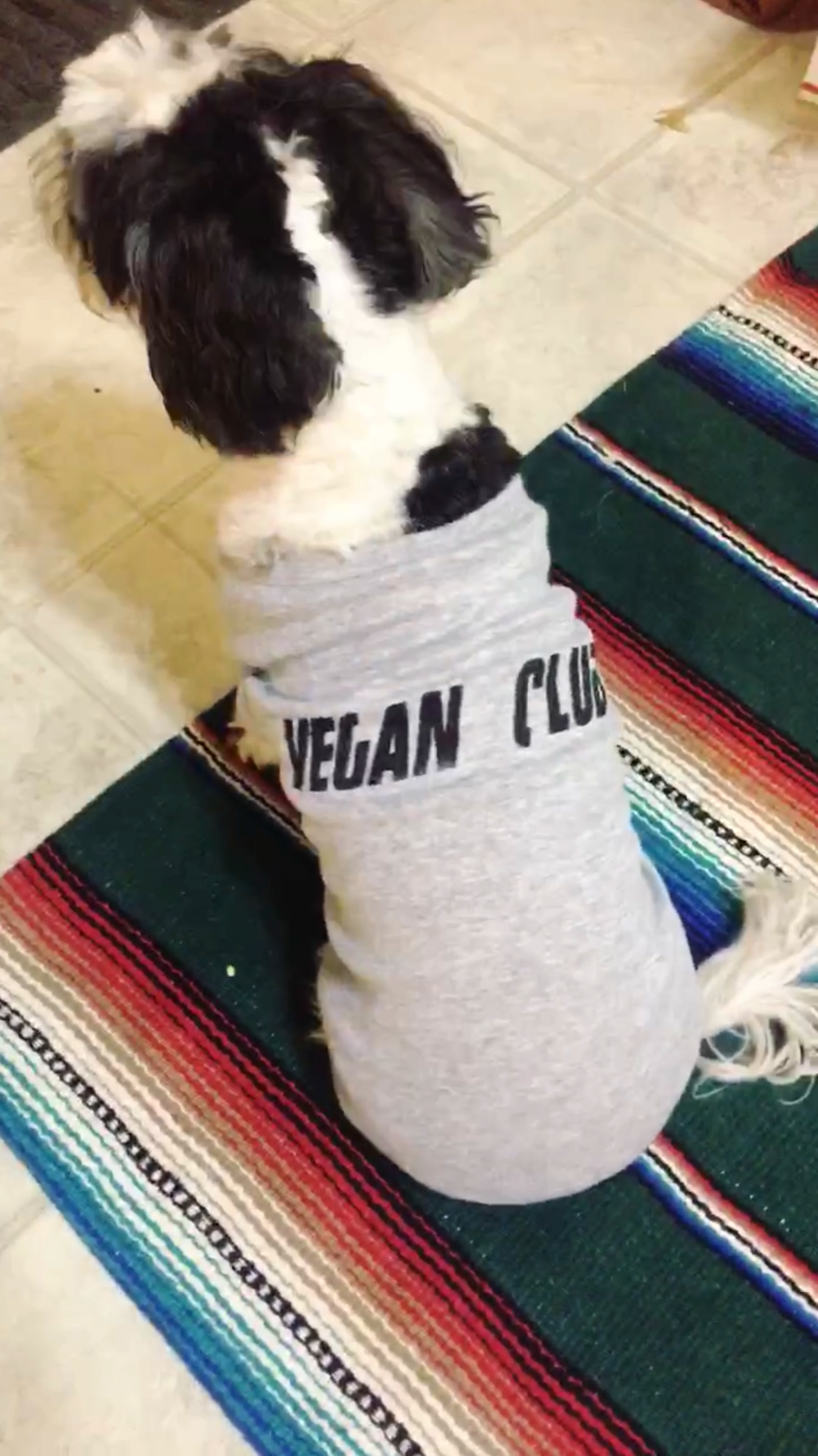 "Dog Tee ""Vegan Club"""
