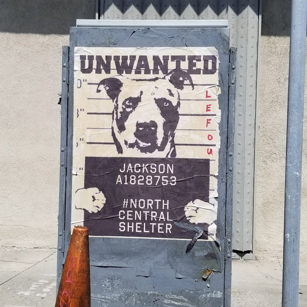 Your Custom Unwanted Dog Poster