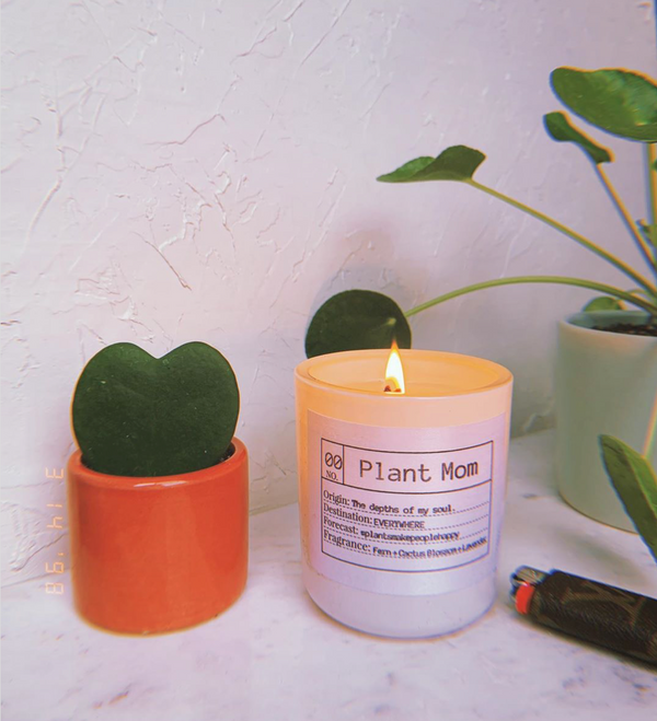 Makes Perfect Scents: The Flores Lane Newsletter #1
