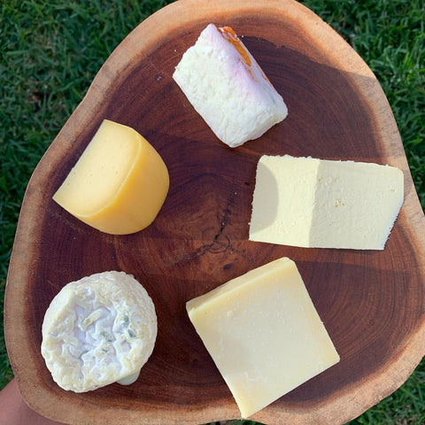 raw milk cheeses from mexico