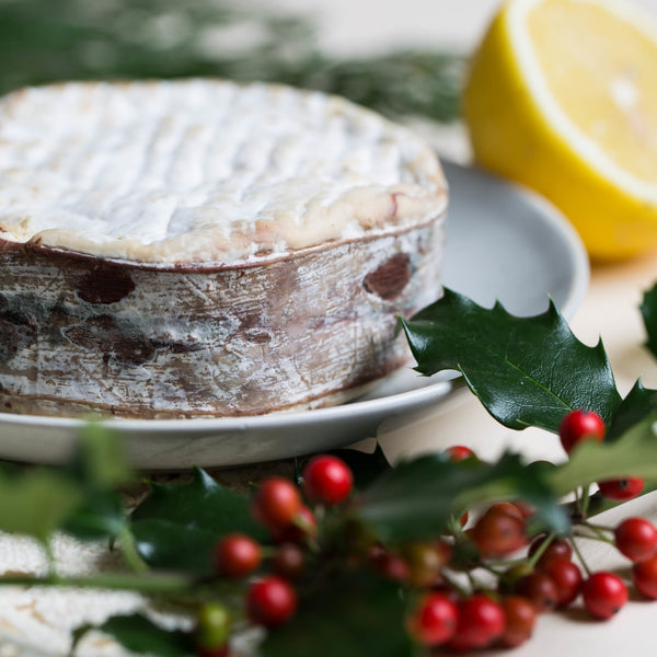 spruce bark wrapped cheese for winter