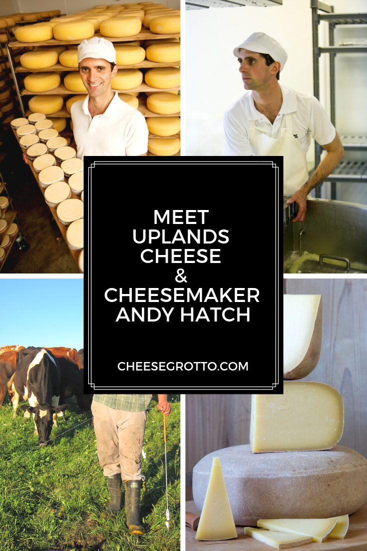 Meet Uplands Cheese