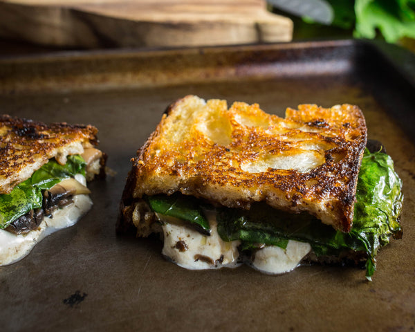 Sourdough grilled cheese with mozzarella, mushroom, and kale