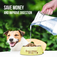 Moist Kibble for Better Health