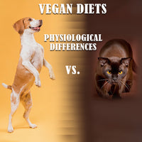 CATS AND DOGS CAN BE VEGAN DESPITE THEIR DIFFERENCES