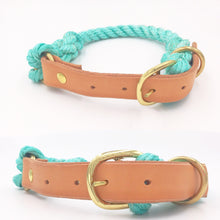 Teal Tangle Collars