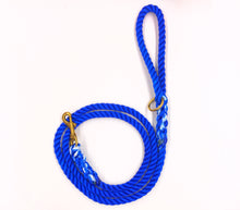 Dyed Polyline Leashes