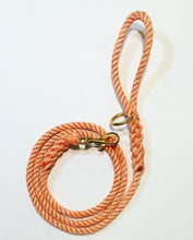 Plain Maine Leashes
