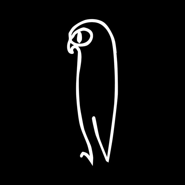 Picasso's Owl Decal