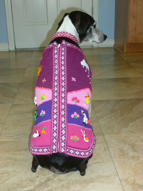 Size 6 Dog Sweater
