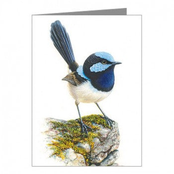 Blank Card, Blue Wren