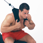Body Solid AB Crunch Harness