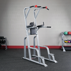 Body Solid SVKR1000 Pro ClubLine Vertical Knee Raise