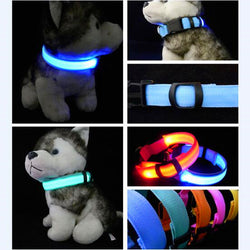 Dog LED Safety Glowing Collar