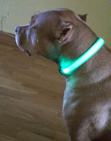 Dog and Cat LED Glow Light Collar - Night Safety - 8 Colors