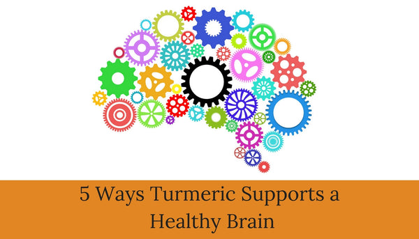 Five ways turmeric supports a healthy brain
