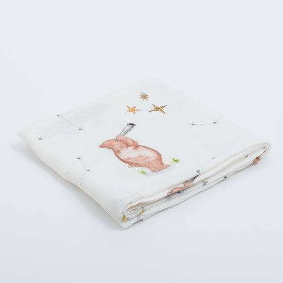 Bamboo Muslins (Stargazing Bear Design) - The Little Art Collection
