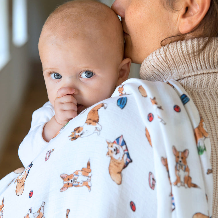 baby with corgi swaddle blanket