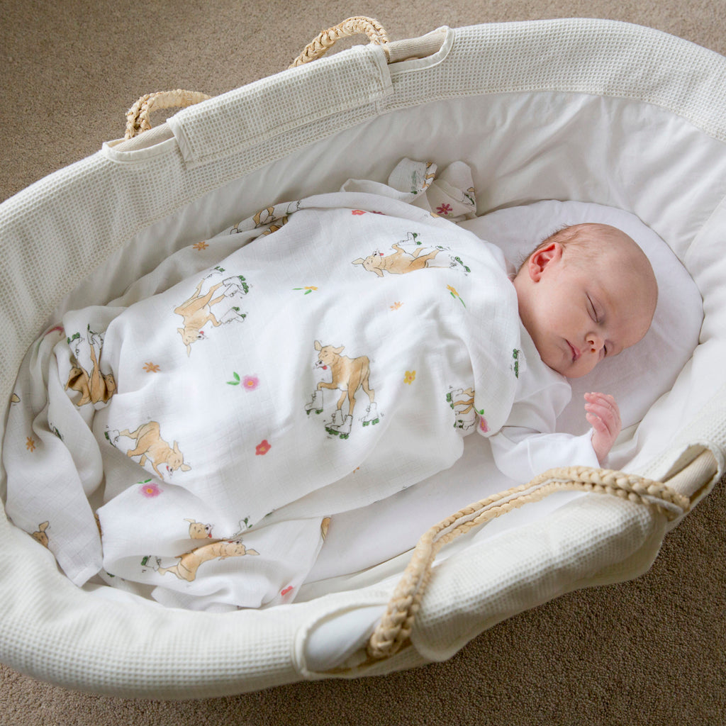 Baby in moses basket with Bamboo baby swaddle blankets